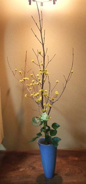 3月23日の花.jpg
